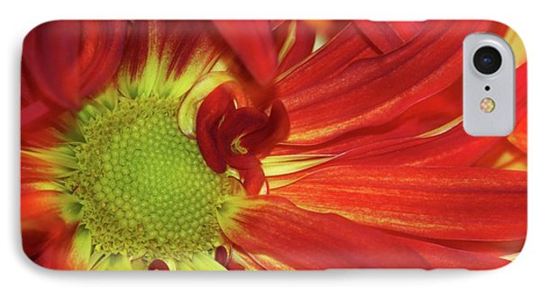 Red Daisy Too Phone Case by Sabrina L Ryan