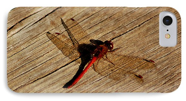 Red Dragon Fly IPhone Case