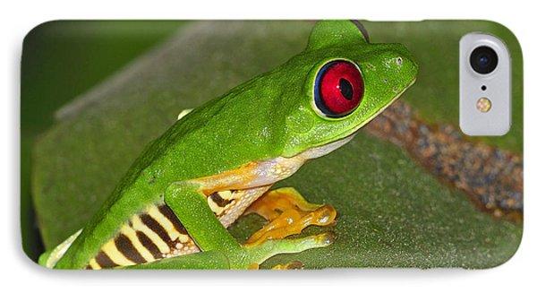 Red-eyed Leaf Frog IPhone Case