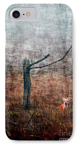 IPhone Case featuring the photograph Red Fox Under Tree by Dan Friend