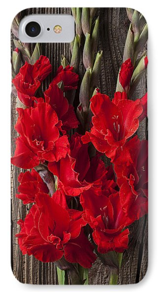 Red Gladiolus Phone Case by Garry Gay