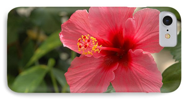 Red Hibiscus Phone Case by Jerry McElroy