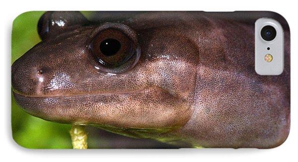 Red Hills Salamander IPhone 7 Case by Dant� Fenolio