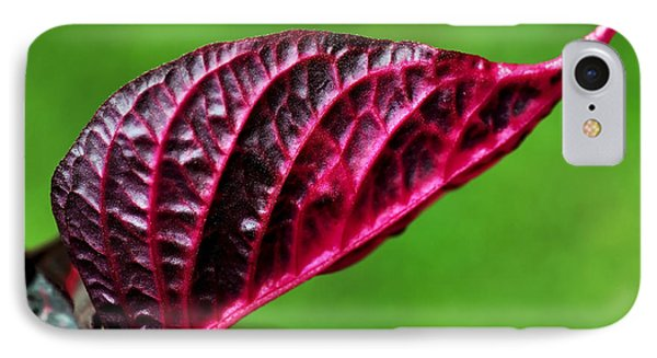 Red Leaf Phone Case by Kaye Menner