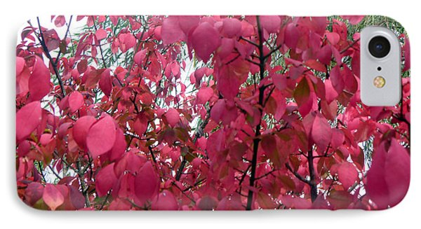 Red Leaves I Phone Case by Alys Caviness-Gober