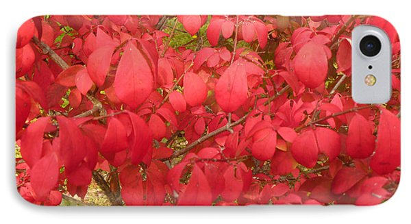 Red Leaves Iv Phone Case by Alys Caviness-Gober