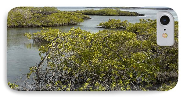 Red Mangroves (rhizophora Mangle) IPhone Case