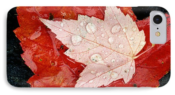 Red Maple Leaves Phone Case by Mike Grandmailson