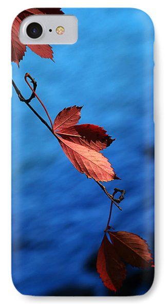 Red Maple Leaves Phone Case by Paul Ge