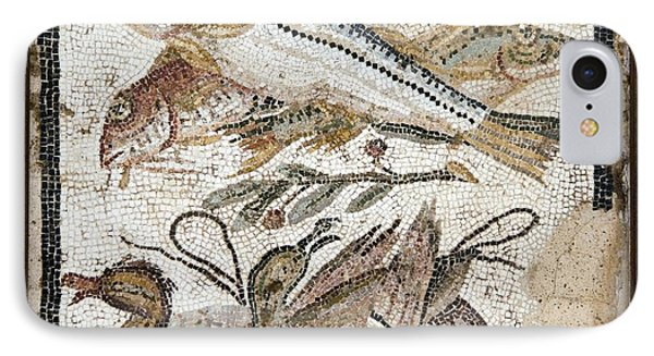 Red Mullets And Ducks, Roman Mosaic Phone Case by Sheila Terry