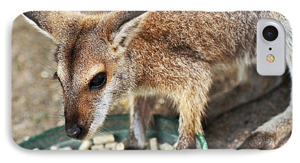 Red-necked Wallaby Phone Case by Kaye Menner
