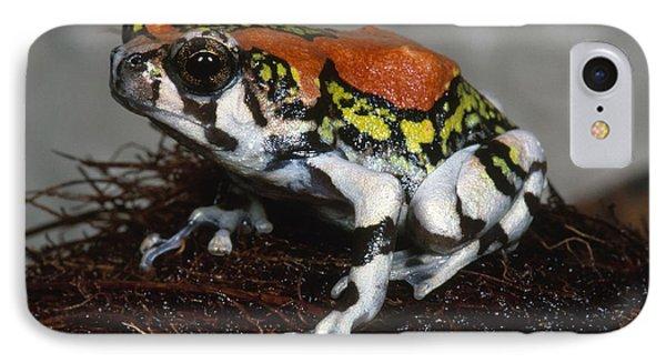 Red Rain Frog Phone Case by Dante Fenolio
