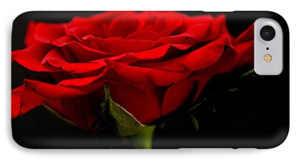 IPhone Case featuring the photograph Red Rose by Steve Purnell