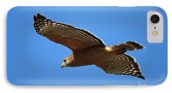 Red Shouldered Hawk In Flight IPhone 7 Case