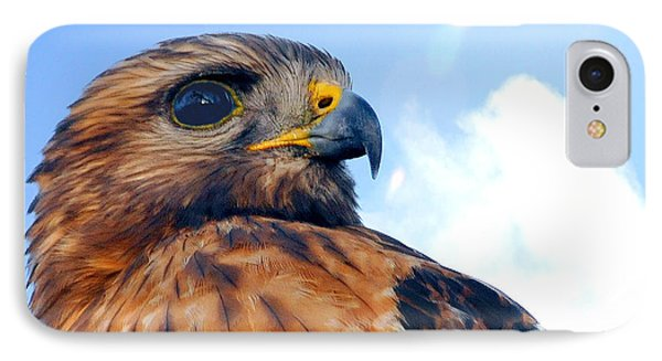 IPhone Case featuring the photograph Red Shouldered Hawk Portrait by Dan Friend