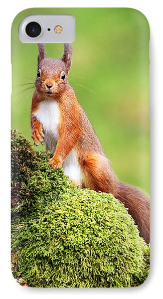 Red Squirrel Phone Case by Grant Glendinning