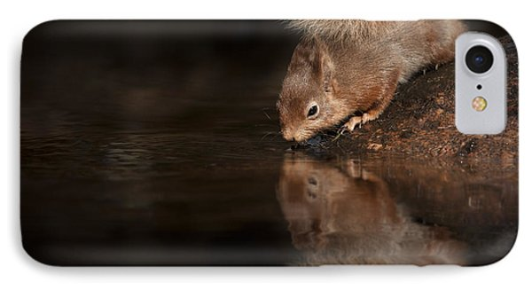 Red Squirrel Reflection IPhone Case