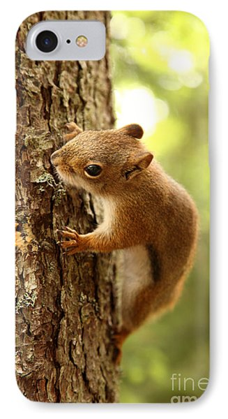 Red Squirrel Phone Case by Ted Kinsman