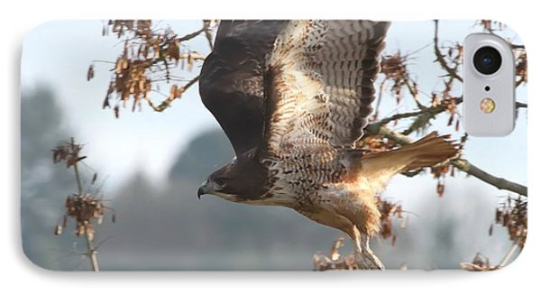 Red-tail Hawk Phone Case by Angie Vogel
