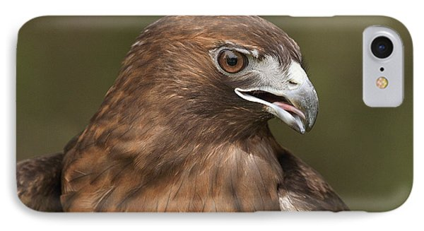 IPhone Case featuring the photograph Red-tailed Hawk by Doug Herr