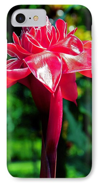 Red Torch Ginger IPhone Case by Jocelyn Kahawai