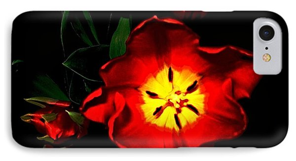 Red Tulips IPhone Case by Dale   Ford