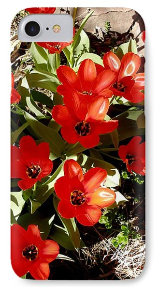IPhone Case featuring the photograph Red Tulips by David Pantuso