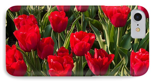 IPhone Case featuring the photograph Red Tulips by Hans Engbers
