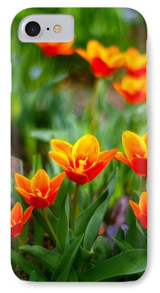 Red Tulips Phone Case by Paul Ge