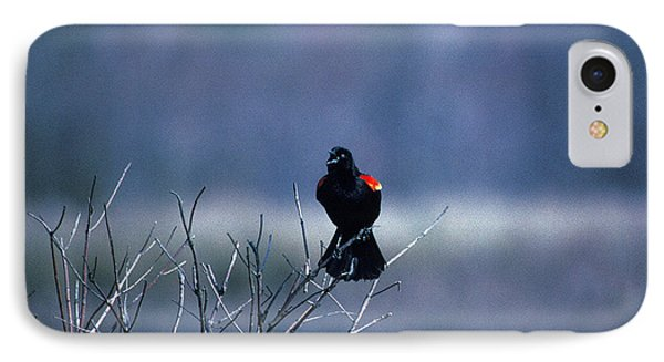 IPhone Case featuring the photograph Red-wings Morning Call 10o by Gerry Gantt