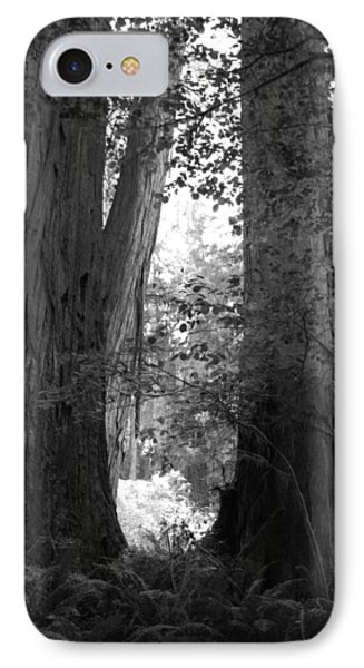 Redwood Pair IPhone Case by Kathleen Grace