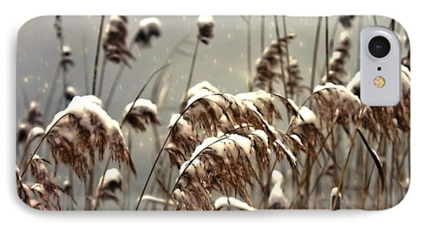 Reed In Snow Phone Case by Joana Kruse
