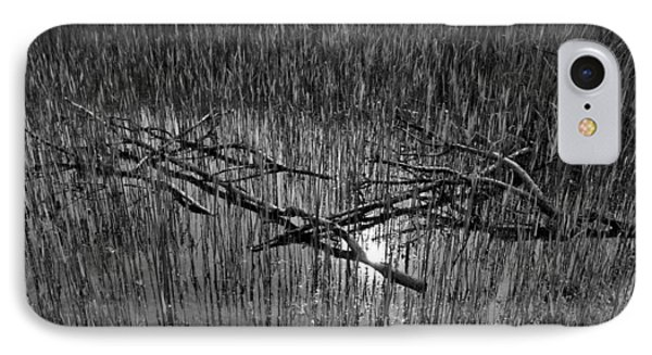 Reeds And Tree Branches Phone Case by David Pyatt