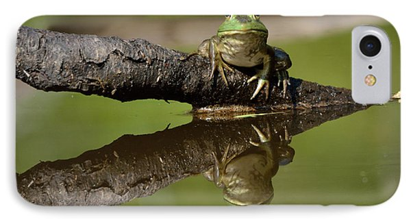 Reflecktafrog Phone Case by Susan Capuano