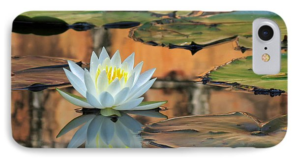IPhone Case featuring the photograph Reflecting Pond by Deborah Smith