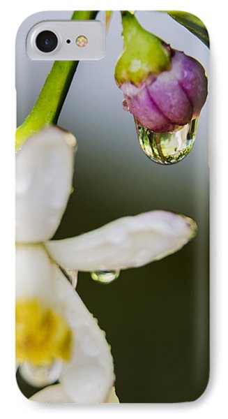 IPhone Case featuring the photograph Reflection by Marta Cavazos-Hernandez