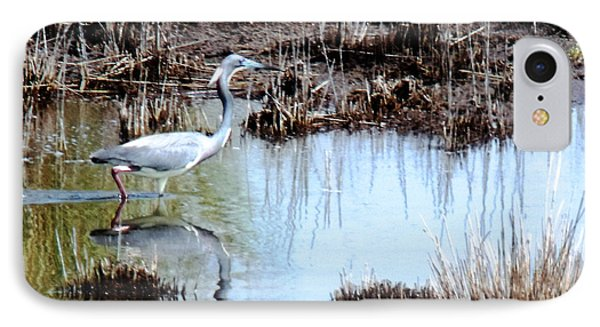 Reflections Of A Blue Heron IPhone Case