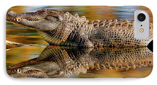 Relection Of An Alligator IPhone Case
