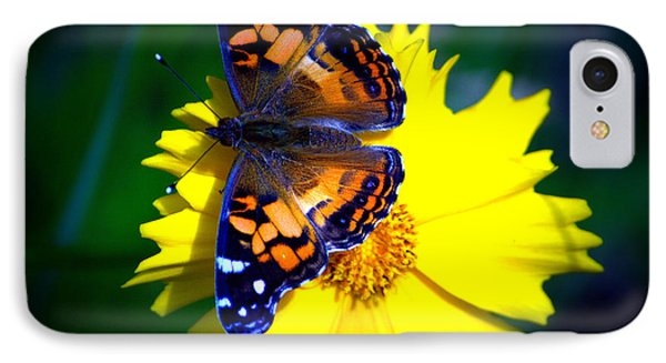 Resting Butterfly IPhone Case