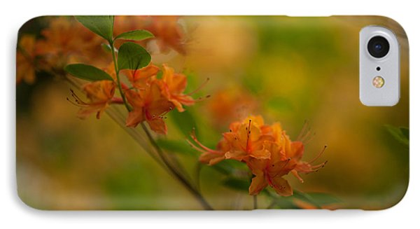 Rhododendron Impressions IPhone Case