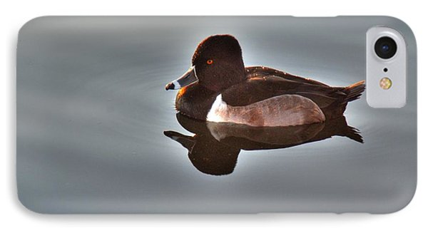 IPhone Case featuring the photograph Ring-necked Duck by Tam Ryan