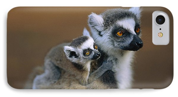 Ring-tailed Lemur Mother Carrying Baby Phone Case by Cyril Ruoso