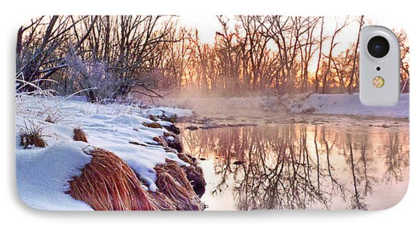 IPhone Case featuring the photograph River Grasses Colorado by William Fields