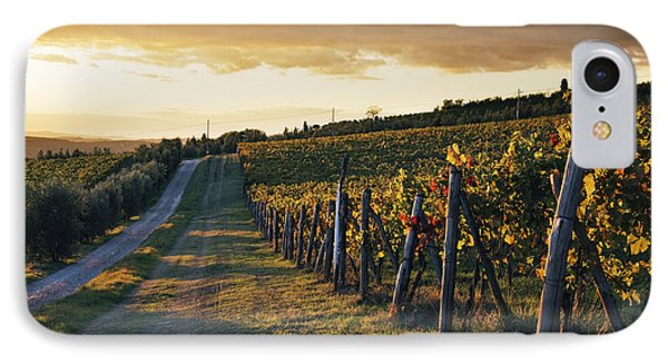 Road Through Vineyard Phone Case by Jeremy Woodhouse