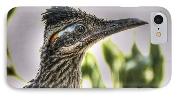 Roadrunner Portrait  IPhone Case by Saija  Lehtonen