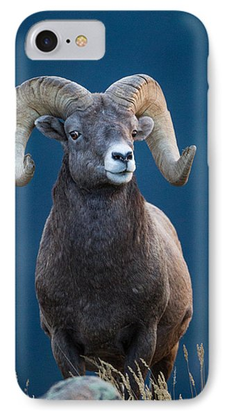 Rocky Mountain Big Horn IPhone Case by Ronald Lutz