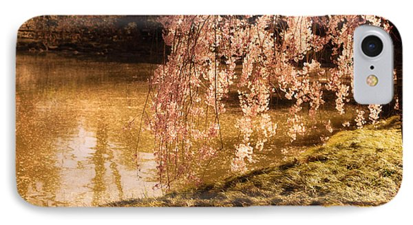 Romance - Sunlight Through Cherry Blossoms IPhone Case by Vivienne Gucwa