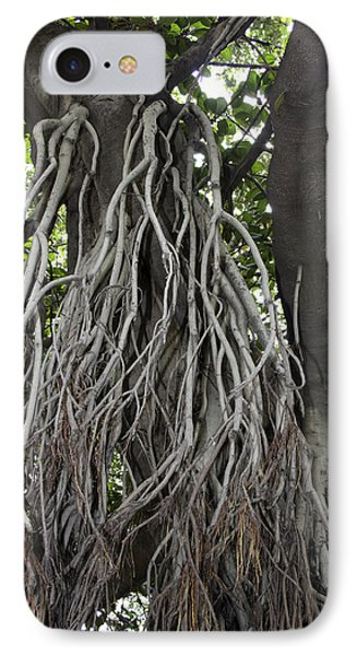 Roots From A Large Tree Inside Jallianwala Bagh IPhone Case by Ashish Agarwal