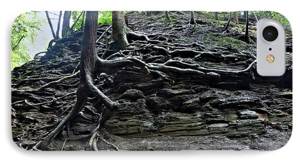 Roots In Shale Phone Case by Ted Kinsman