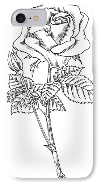Rose, Lino Print IPhone Case by Gary Hincks